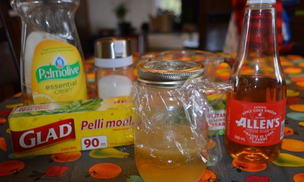 Le meilleur truc pour se débarrasser des mouches à fruits