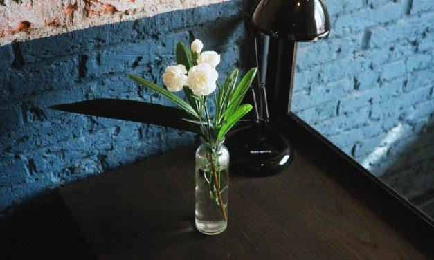 Comment conserver les fleurs plus longtemps