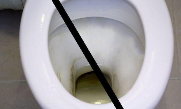 Laver la bol de toilette avec des produits naturels