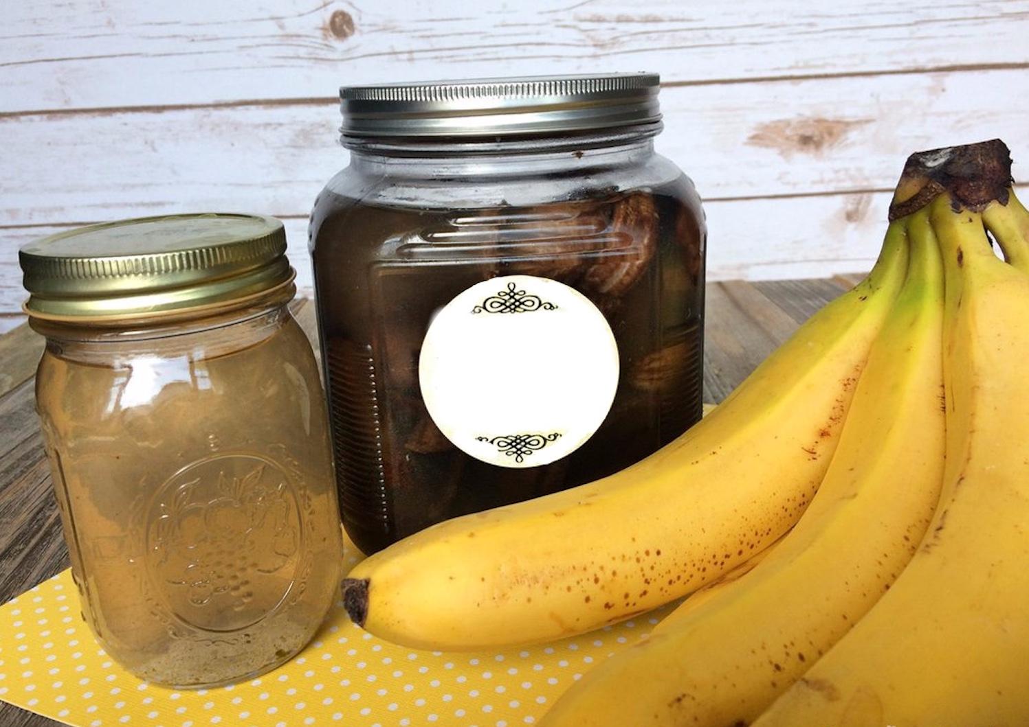 Engrais 100% naturel et efficace, à base de bananes! (Très facile à faire)