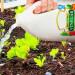 8 utilisations surprenantes du vinaigre dans le jardin!