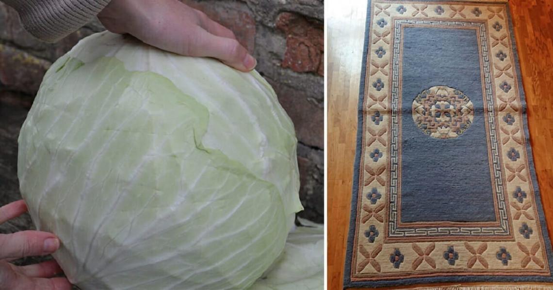 Une façon efficace et bien surprenante de laver ses tapis...!